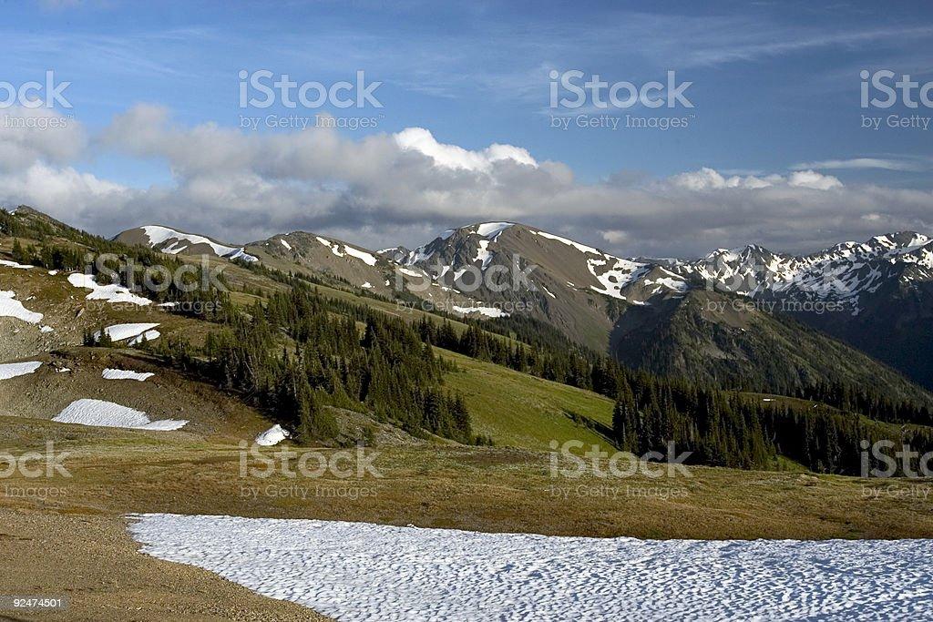 Alpine meadows stock photo