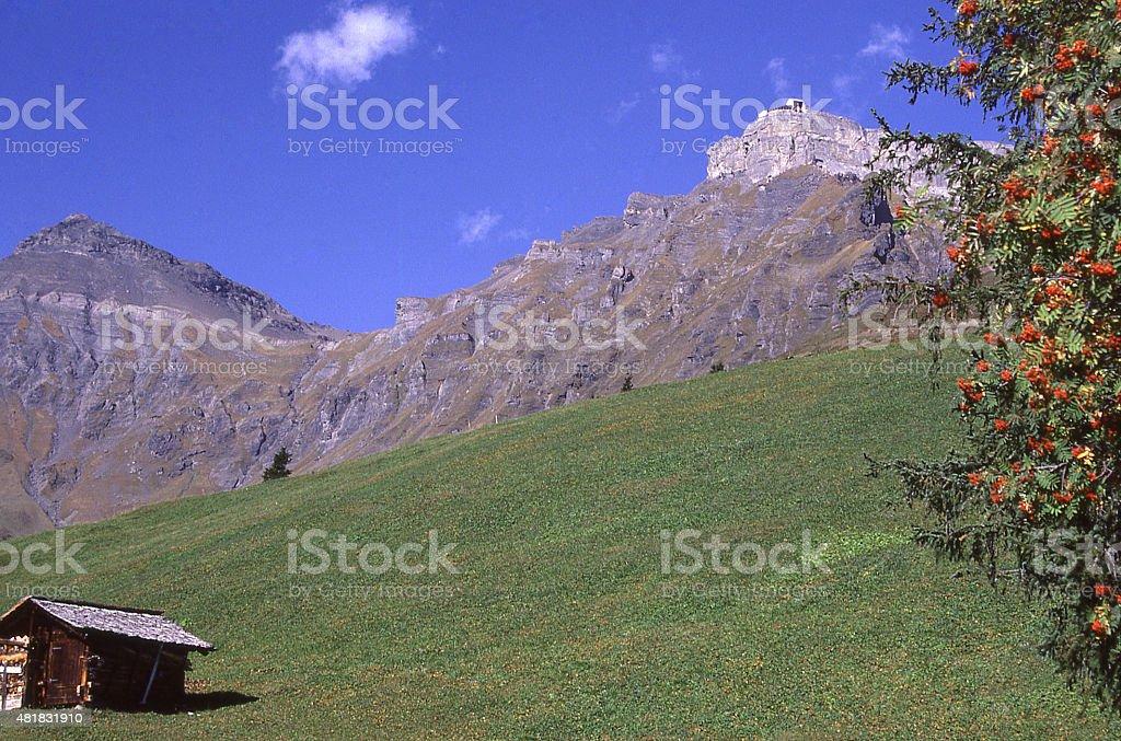 Alpine meadows Swiss Alps near Gimmelwald village and Lauterbrunnen Switzerland stock photo