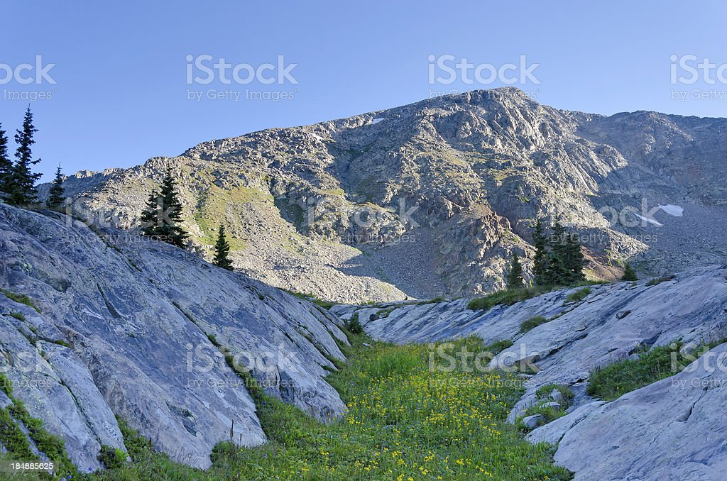 Alpine Mountain Meadow stock photo