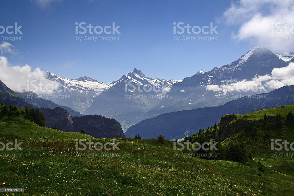Alpine Panorama stock photo