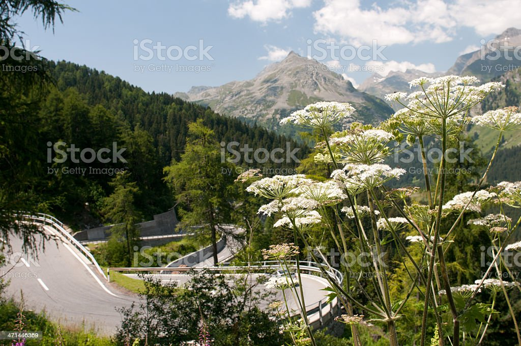 Alpine Pass royalty-free stock photo