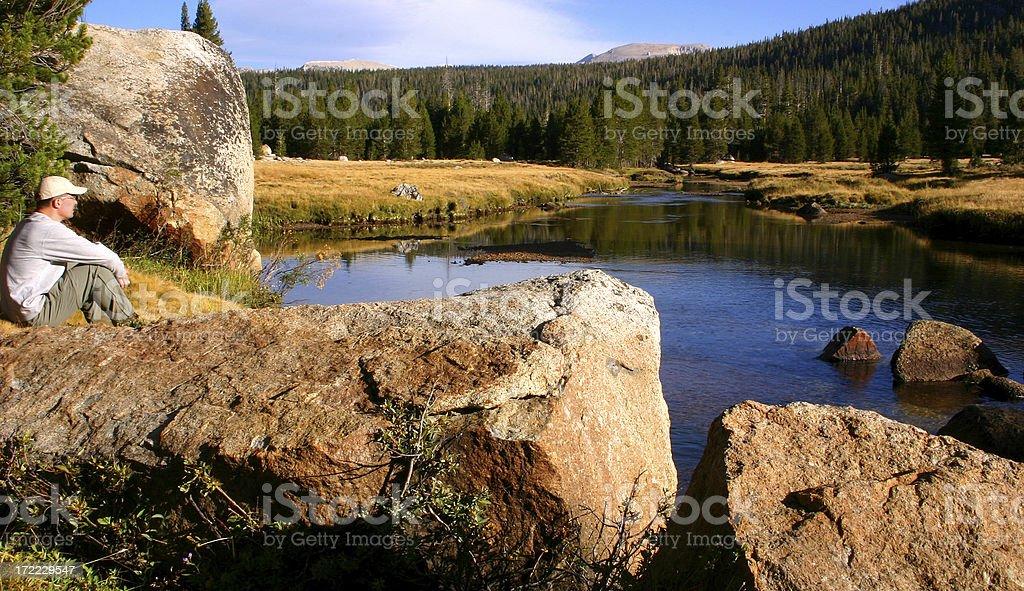 Alpine River View royalty-free stock photo