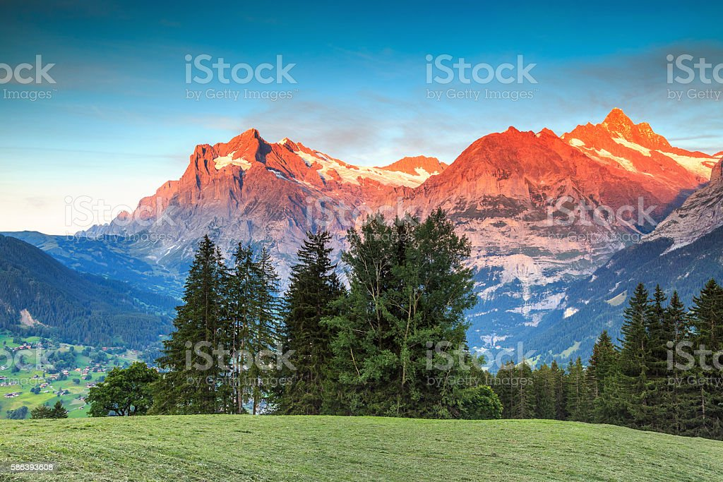 Alpine rural landscape with high snowy mountains,Grindelwald,Switzerland,Europe stock photo