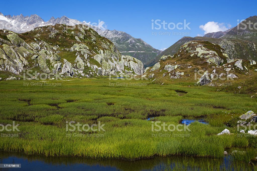 Alpine summer royalty-free stock photo