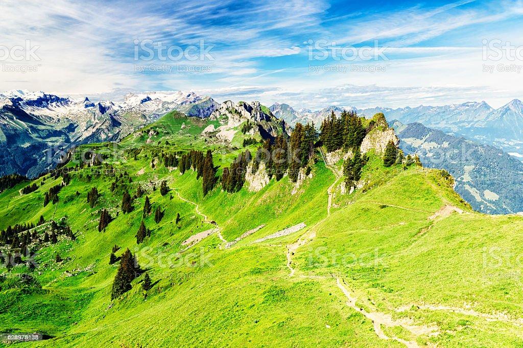 Alpine trail, Bernese Alps, Schynige Platte to First stock photo