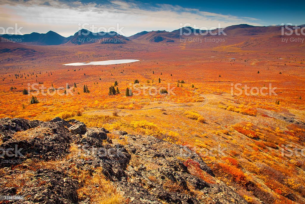 Alpine tundra royalty-free stock photo
