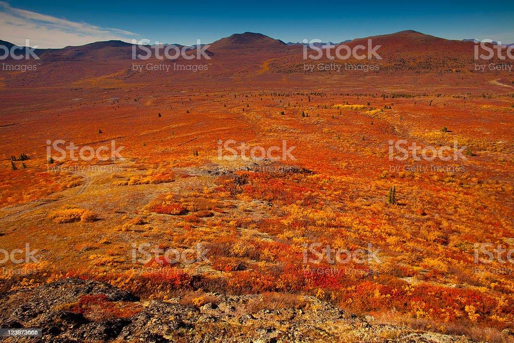 Alpine tundra royalty-free stock photo