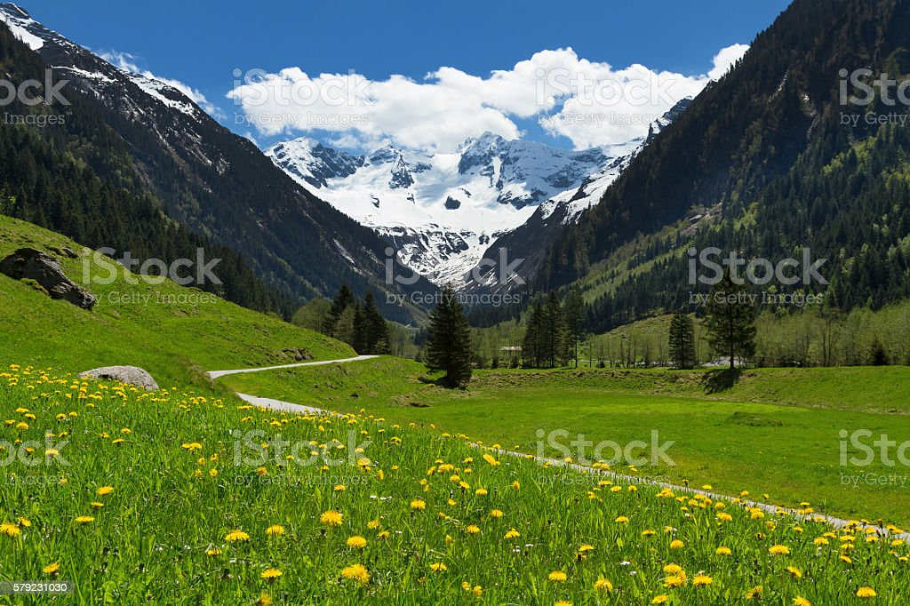 Alpine valley in springtime with snow capped mountains stock photo