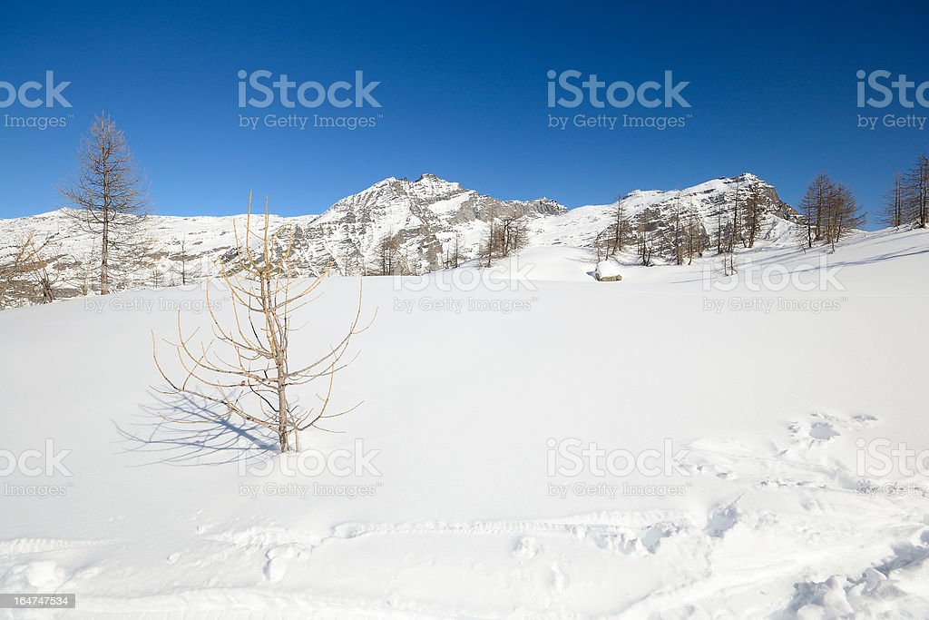 Alpine winter landscape royalty-free stock photo