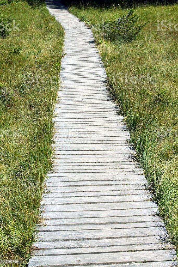 Alpine wooden Trekking footway stock photo