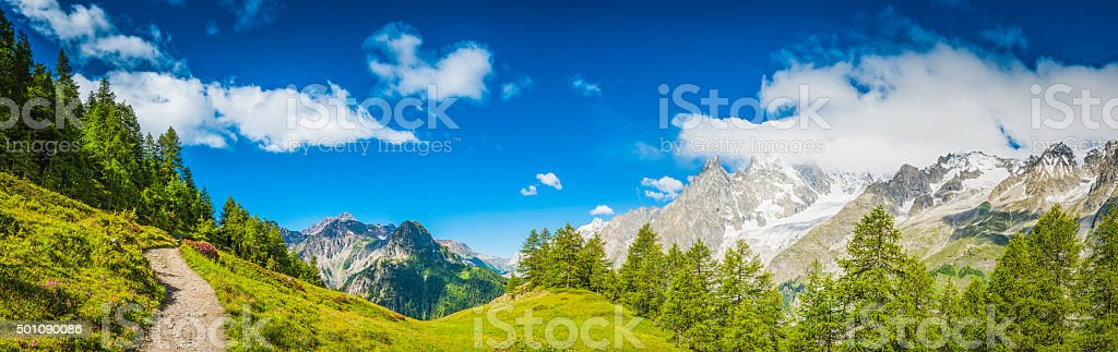Alps idyllic earth trail through Alpine meadow forest mountain peaks stock photo