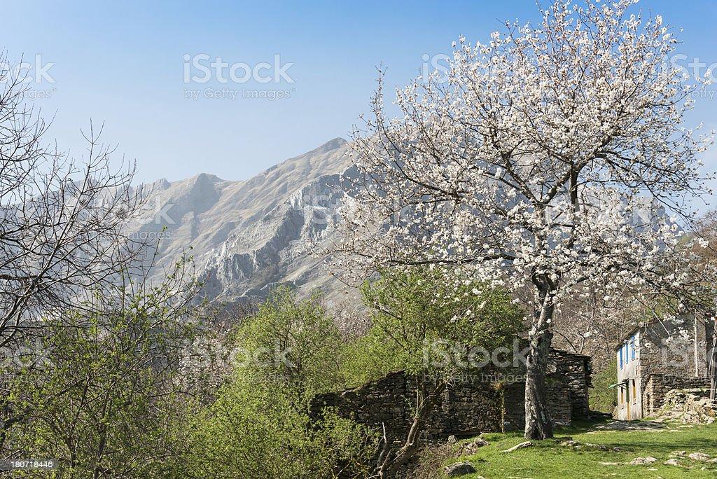Alps mountains on spring royalty-free stock photo