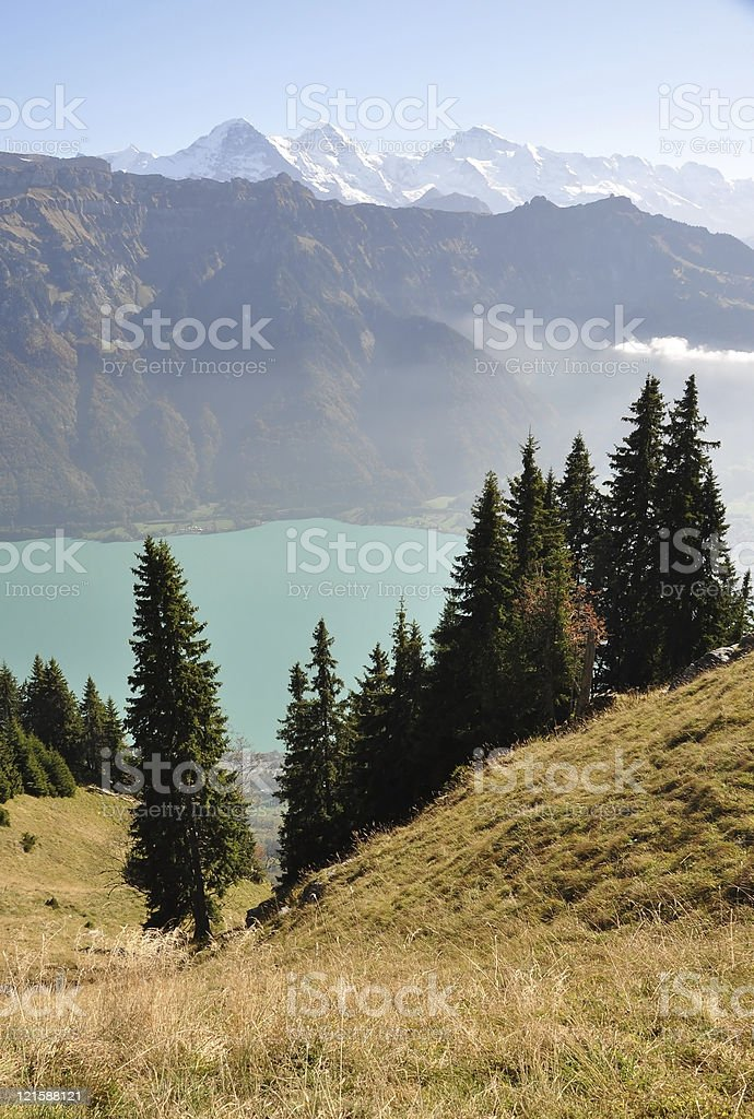 Alps royalty-free stock photo