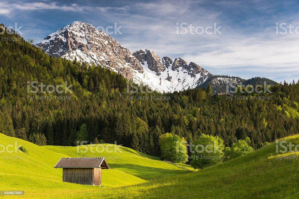 Alpen (Tauernspitz, Reutte, Tirol, Österreich) stock photo