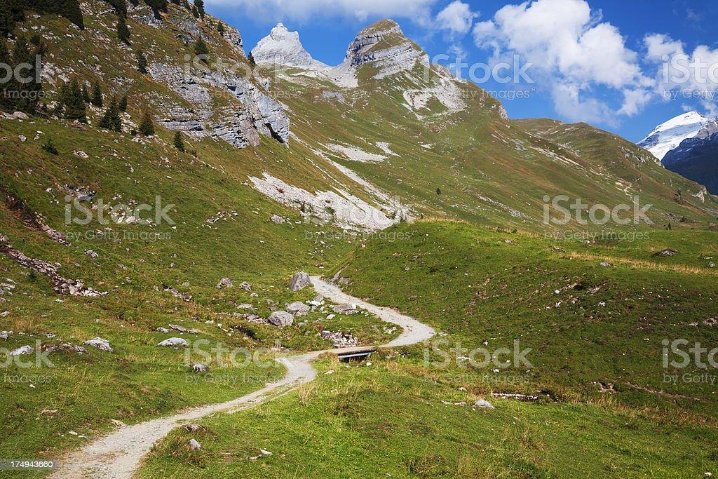 Alps summer stock photo