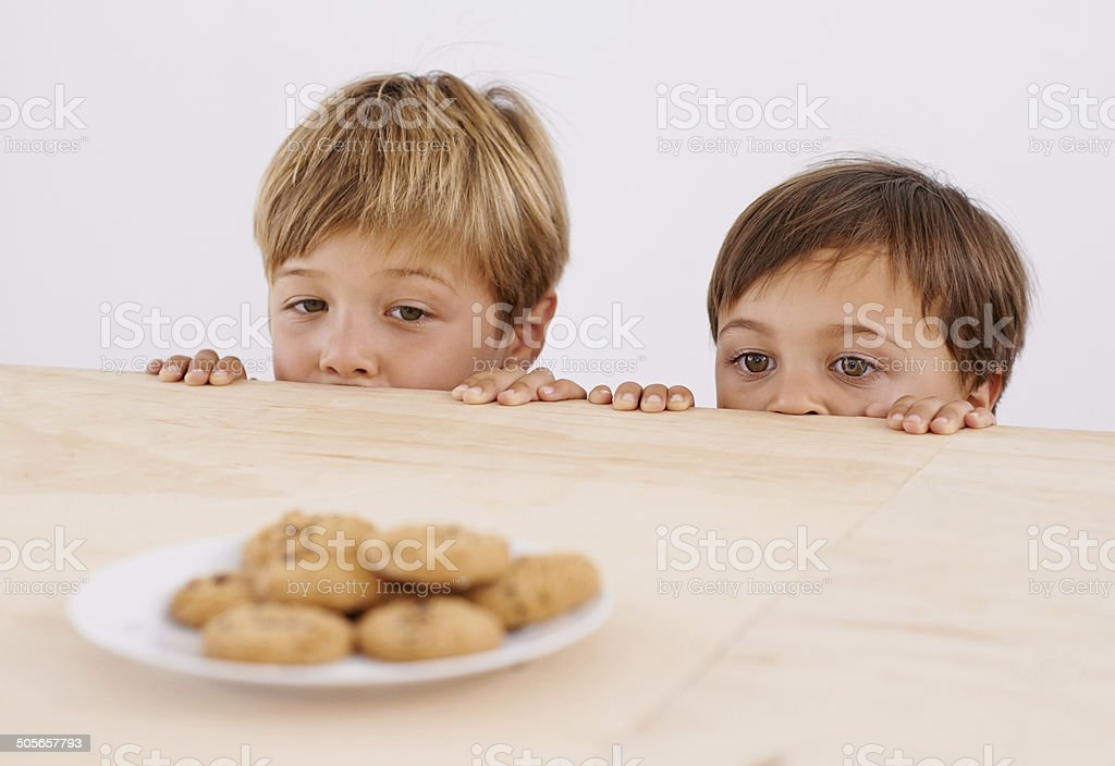 Already partners in crime! stock photo
