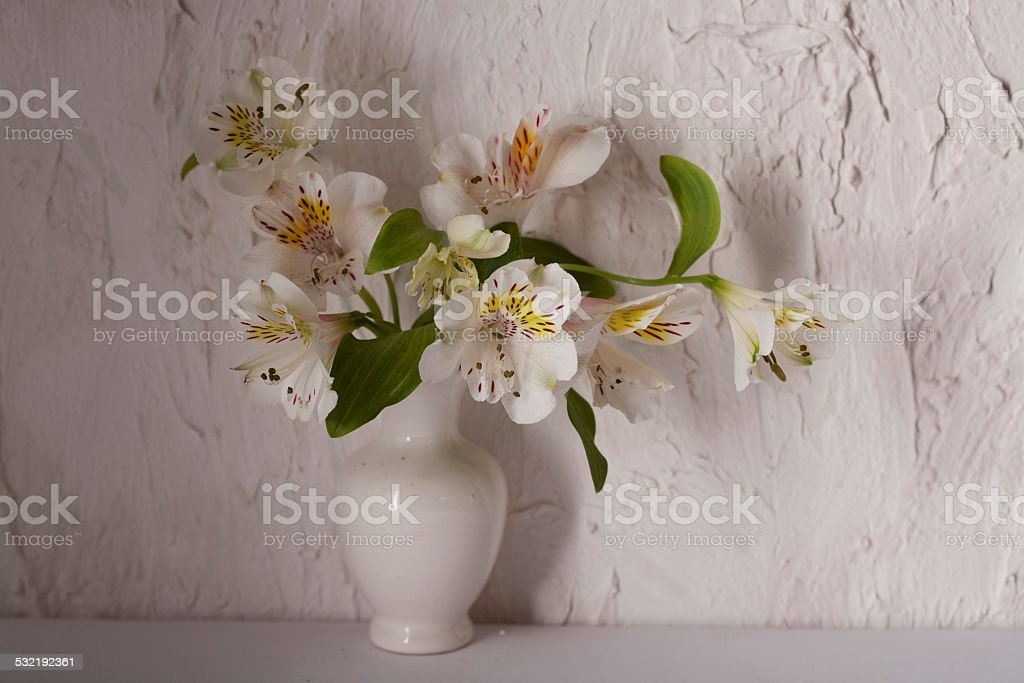 Alstroemeria flowers in a  vase stock photo