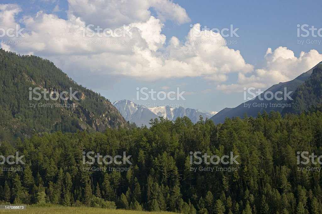Altai landscape royalty-free stock photo