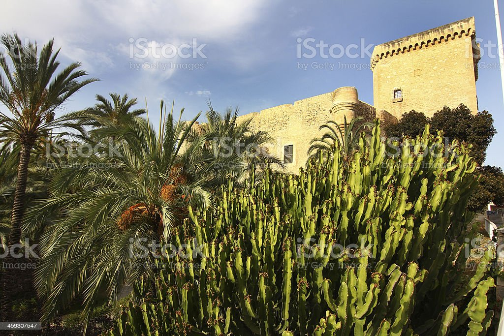 Altamira Palace in Elche Spain stock photo