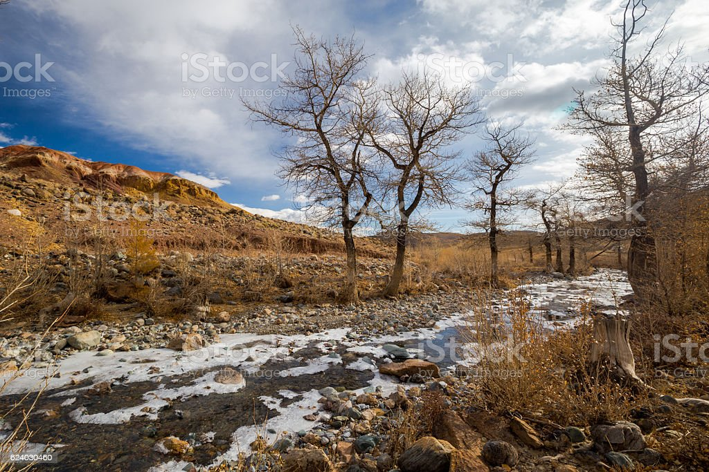 Altay. Mountains. Golden autumn. Blue sky. stock photo