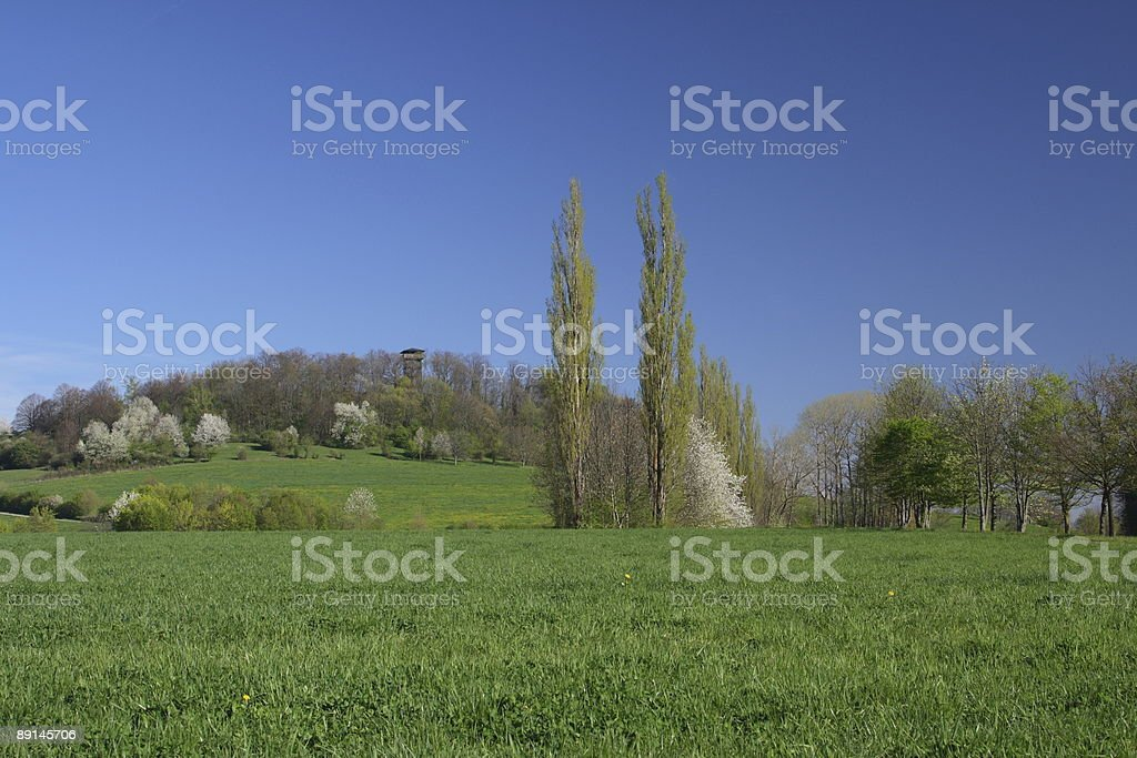 Alteburg Tower in Spring royalty-free stock photo