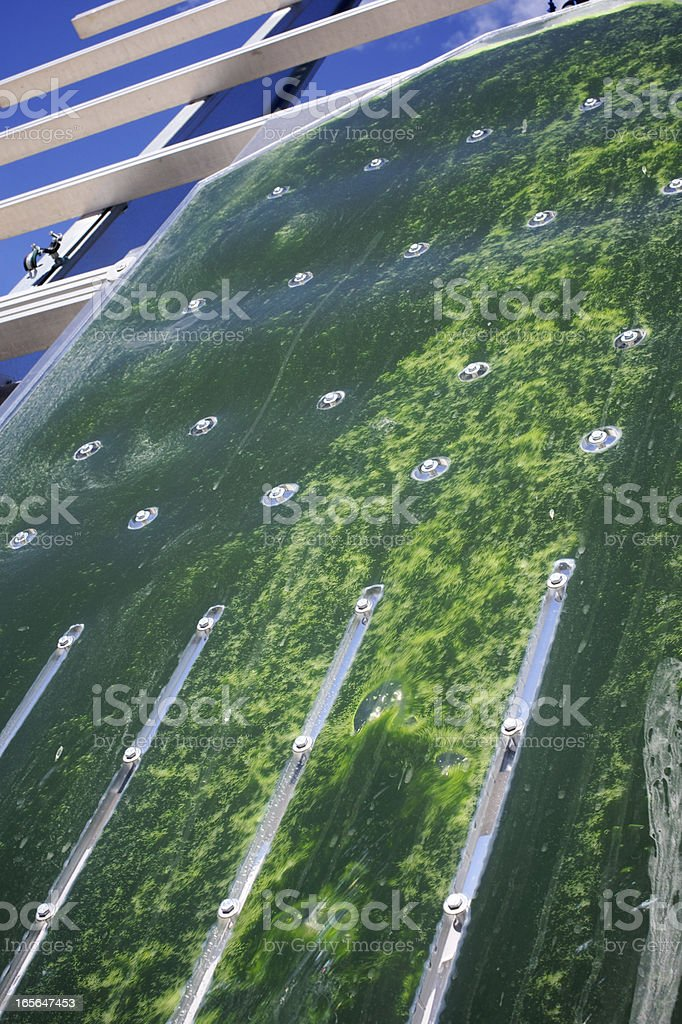 Alternative Energy: production of micro algae for regenerative power supply. royalty-free stock photo