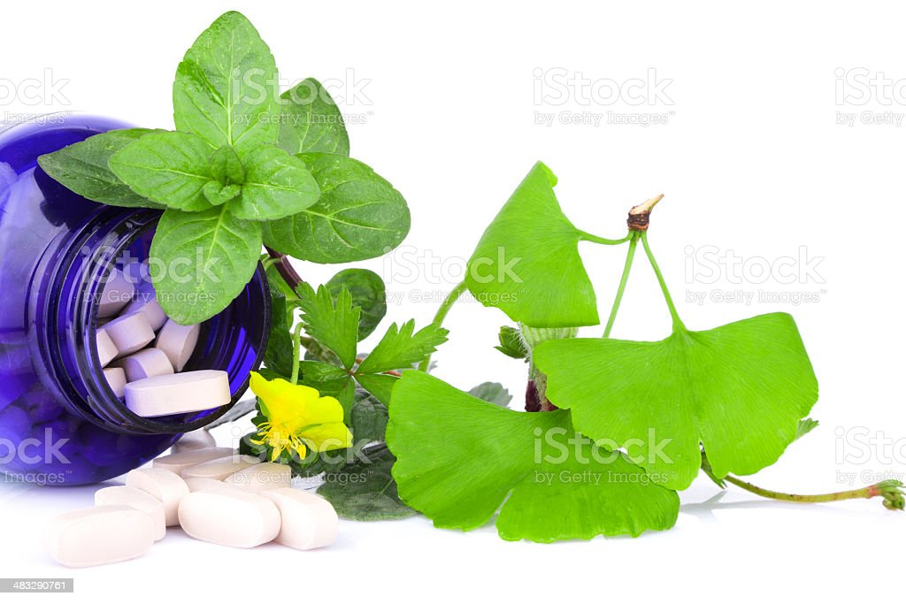 Alternative medicine:herb plant variety and capsule isolated on white royalty-free stock photo