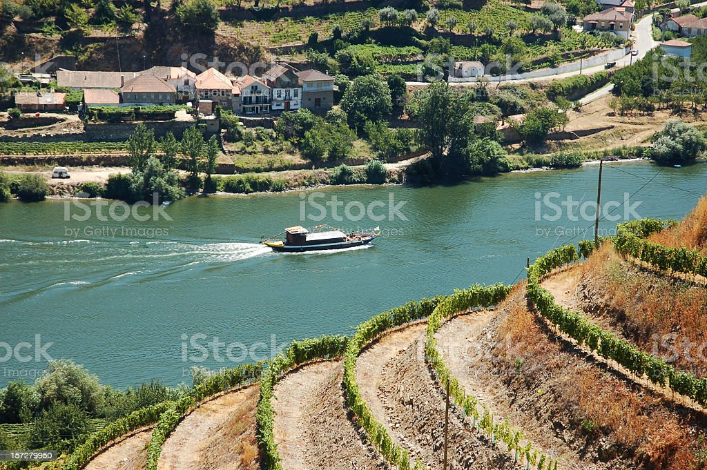 Alto Douro, Port Wine region royalty-free stock photo