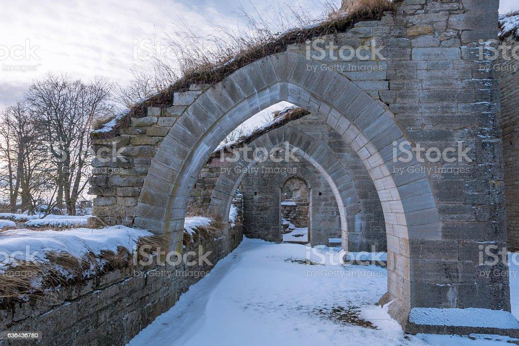Alvastra Monastery ruins stock photo