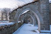 Alvastra Monastery ruins