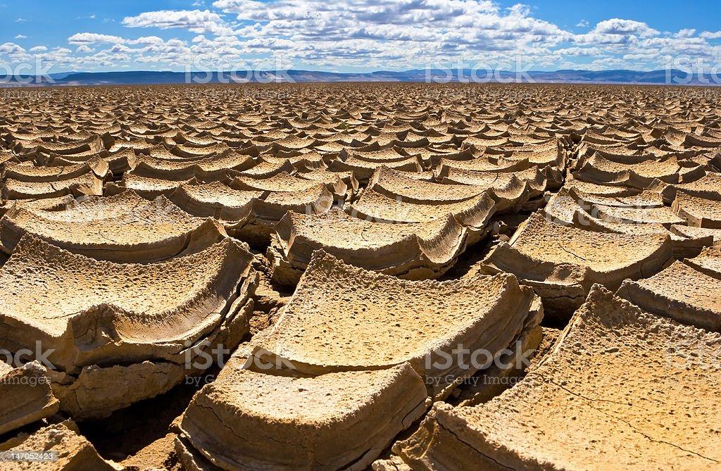 Alvord Desert cracked earth stock photo