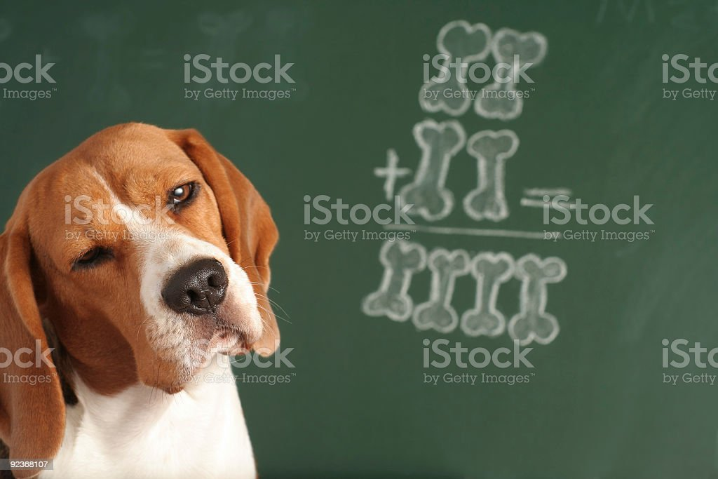 I Am Not Sure royalty-free stock photo
