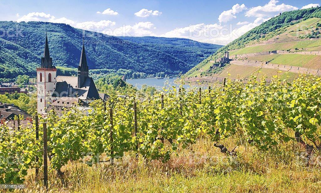 Am Rheinknie bei Bingen mit M?useturm und Burg Ehrenfels stock photo