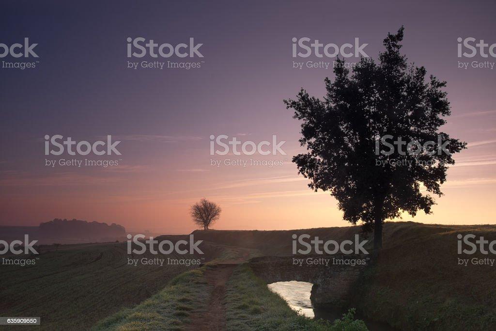Amanecer en el campo stock photo