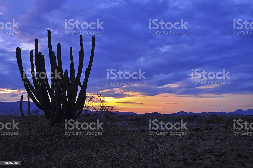 Amanecer en el Desierto de La Tatacoa stock photo