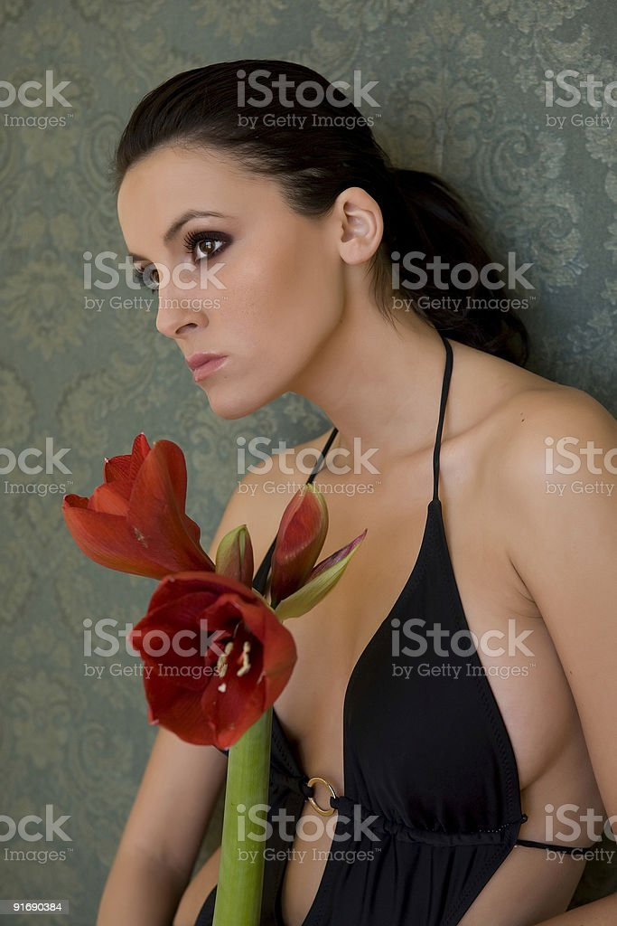 Amaryllis Beauty royalty-free stock photo