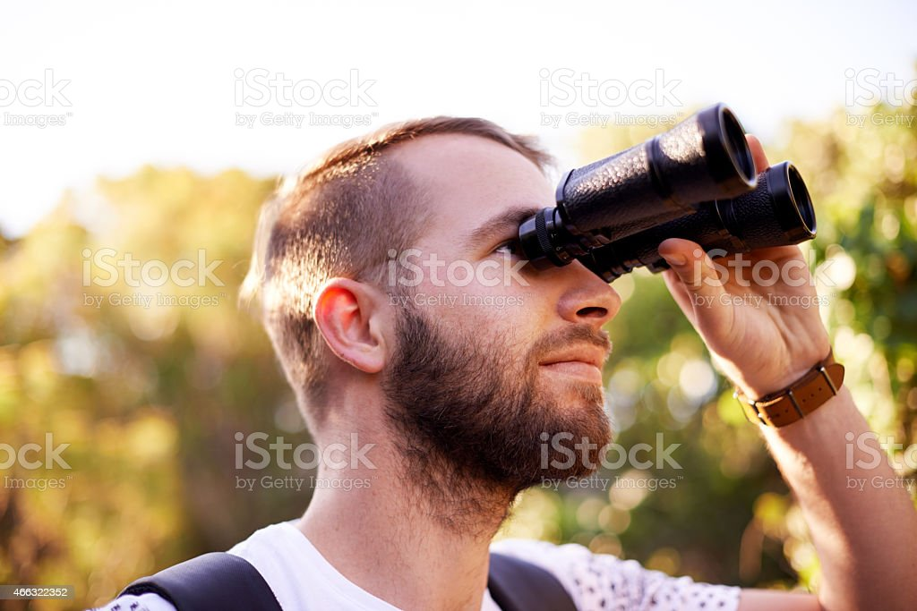 Amazed by the finer details stock photo