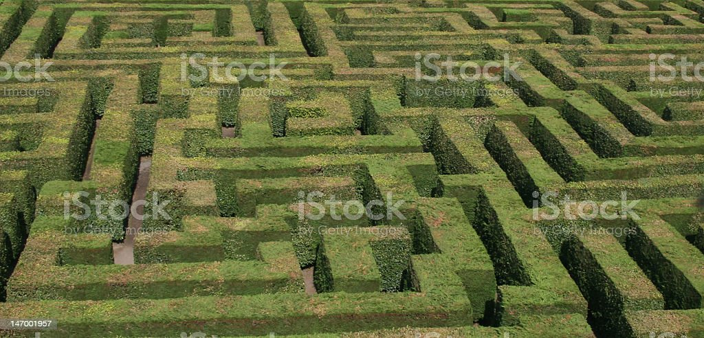 Hedge Maze, Traquair House, Scotland.