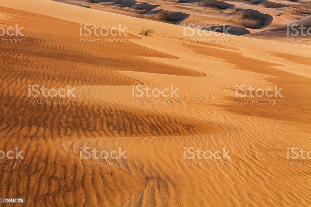 Amazing abstract patterns on the sand of the Gobi desert. stock photo