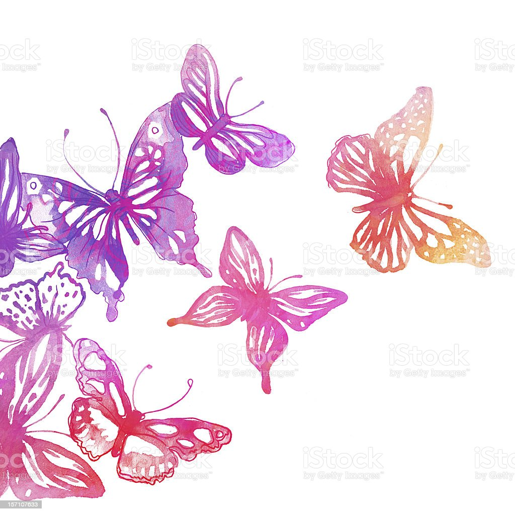 Amazing background with butterflies and flowers stock photo