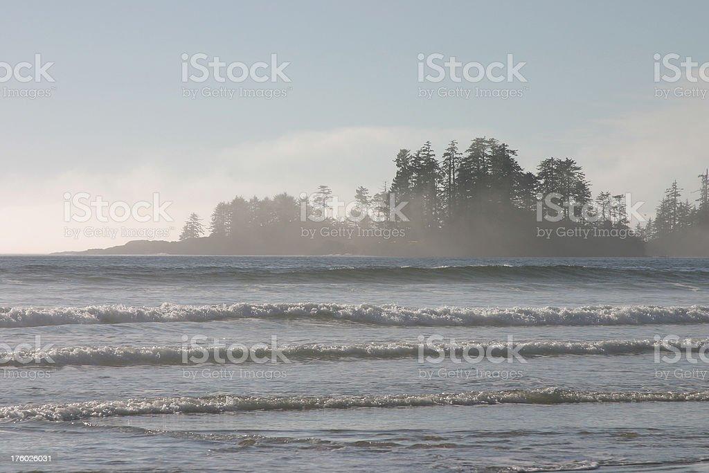 Amazing Beach Fog II royalty-free stock photo