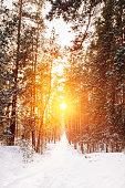Amazing Beautiful sunset sunrise sun sunshine in sunny winter sn