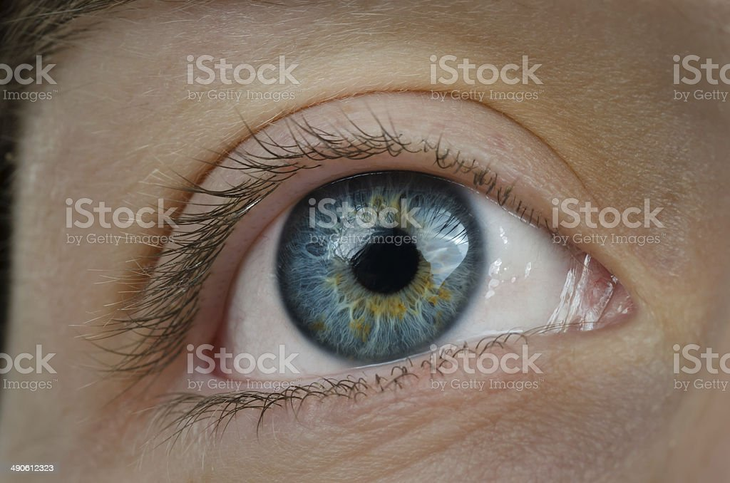 Amazing blue eyes. High definition image. stock photo
