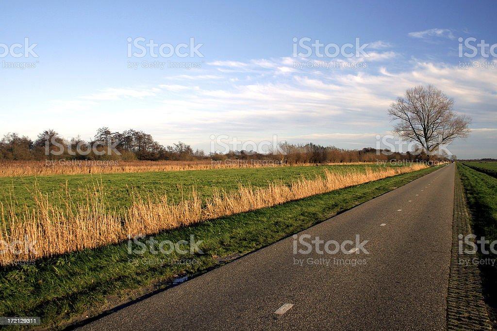 Amazing Dutch Landscape royalty-free stock photo