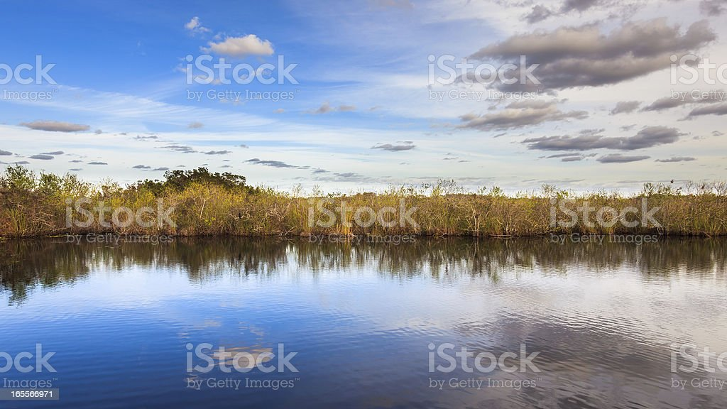 Amazing Everglades Panorama royalty-free stock photo