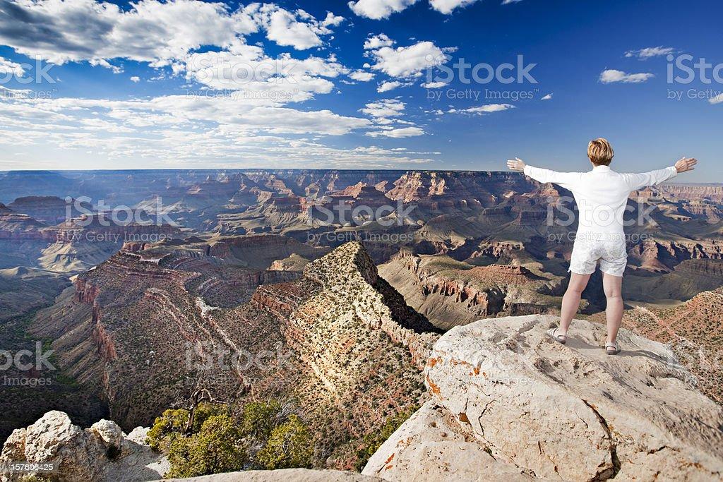 Amazing Grand Canyon royalty-free stock photo