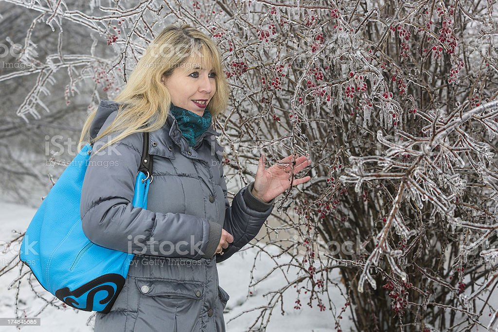 Amazing ice sculptures, Vienna Woods royalty-free stock photo