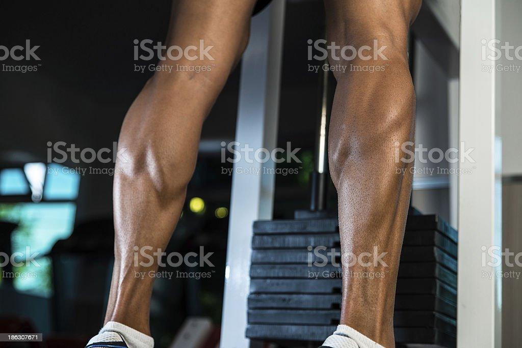 Amazing legs royalty-free stock photo