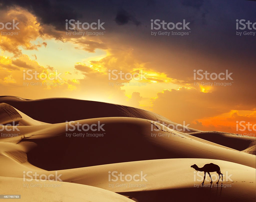 Amazing Morocco stock photo