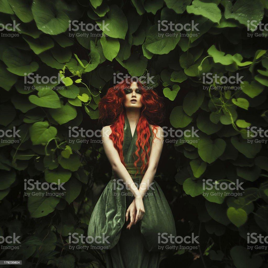 Amazing redhaired fashion women stock photo